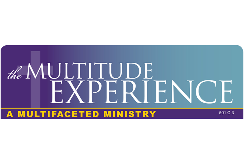 The Multitude Experience Logo